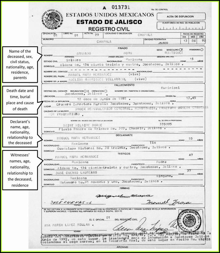 Birth Certificate Translation Template Pdf: Free Birth Announcement Template Svg