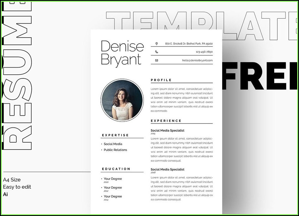 Minimalist Resume Template Free Download