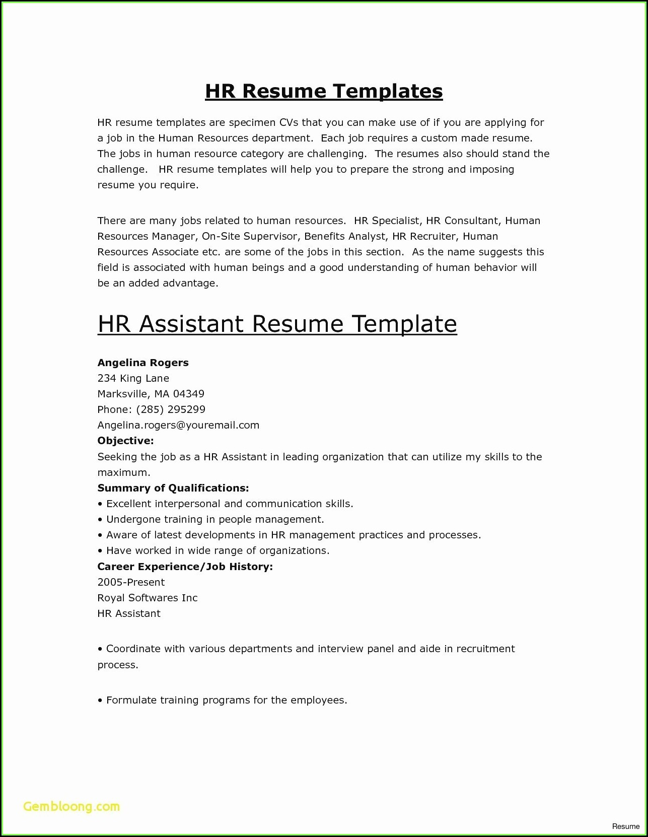 Monster Jobs Resume Template
