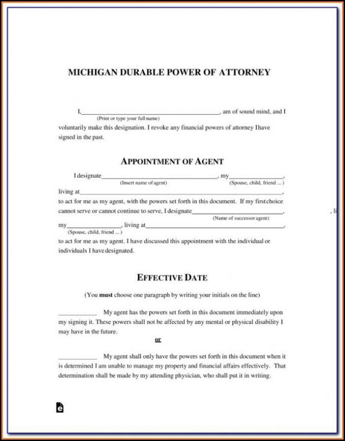 Power Of Attorney Form Michigan Guardianship