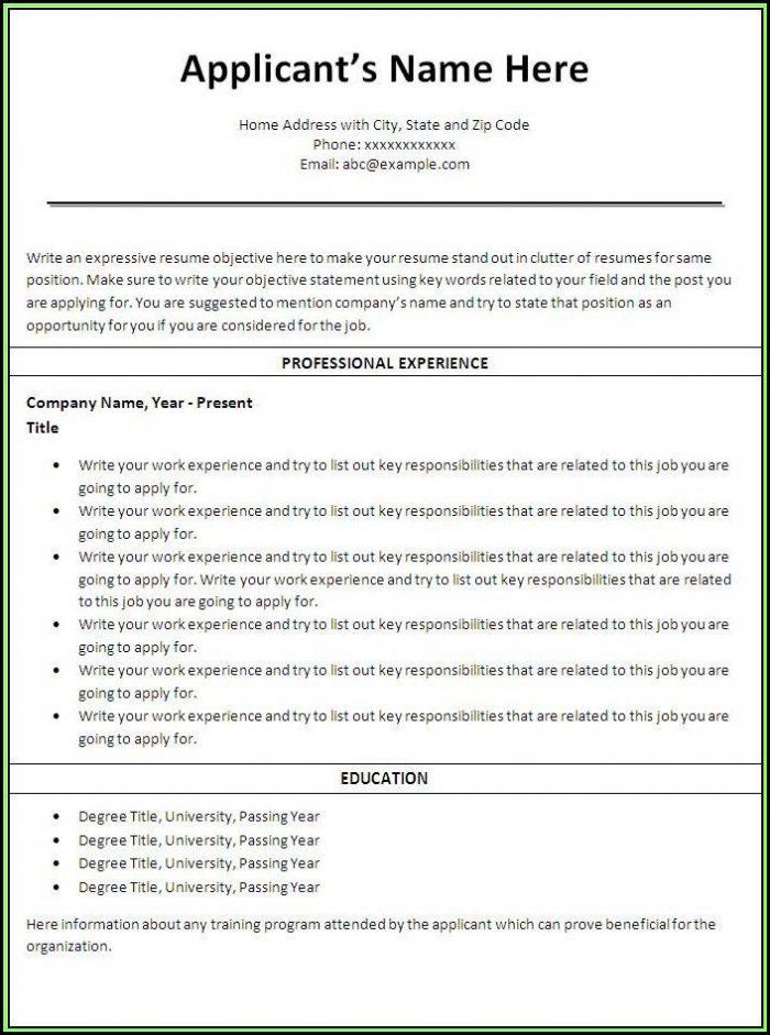 Printable Resume Builder