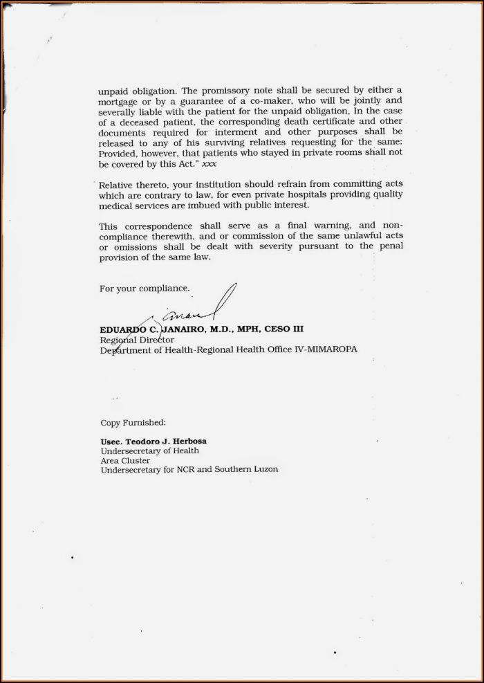 Promissory Note Sample For Hospital Bill