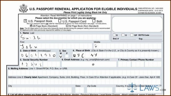 Renewal Passport Forms