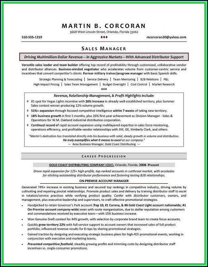 Resumes For Executives Examples