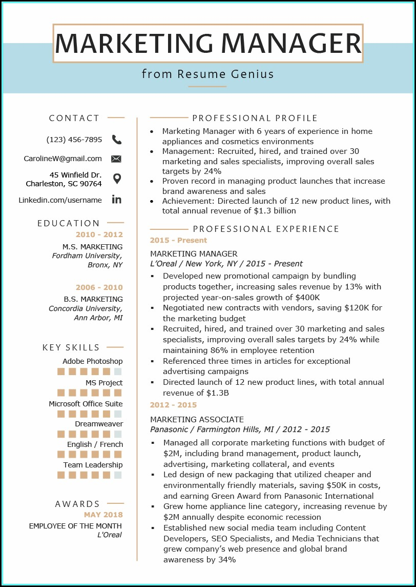 Resumes For Marketing Executives