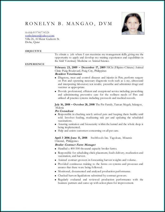 Security Officer Resume Template
