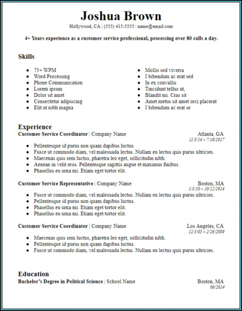 Skill Based Resume Template Free Download