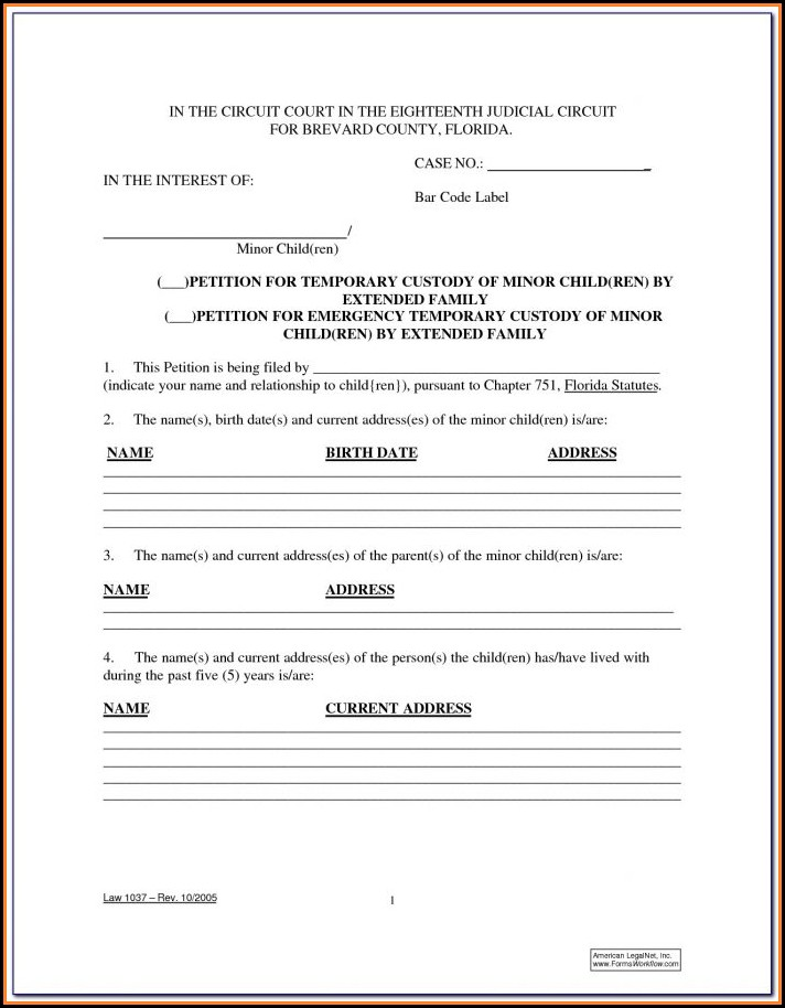 Temporary Guardianship Form Illinois Pdf