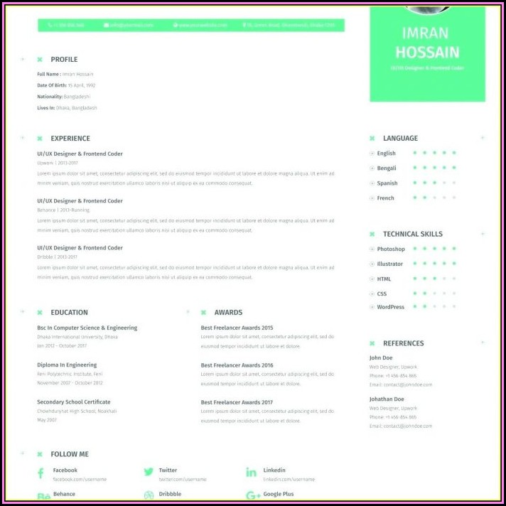 Attractive Resume Templates For Experienced