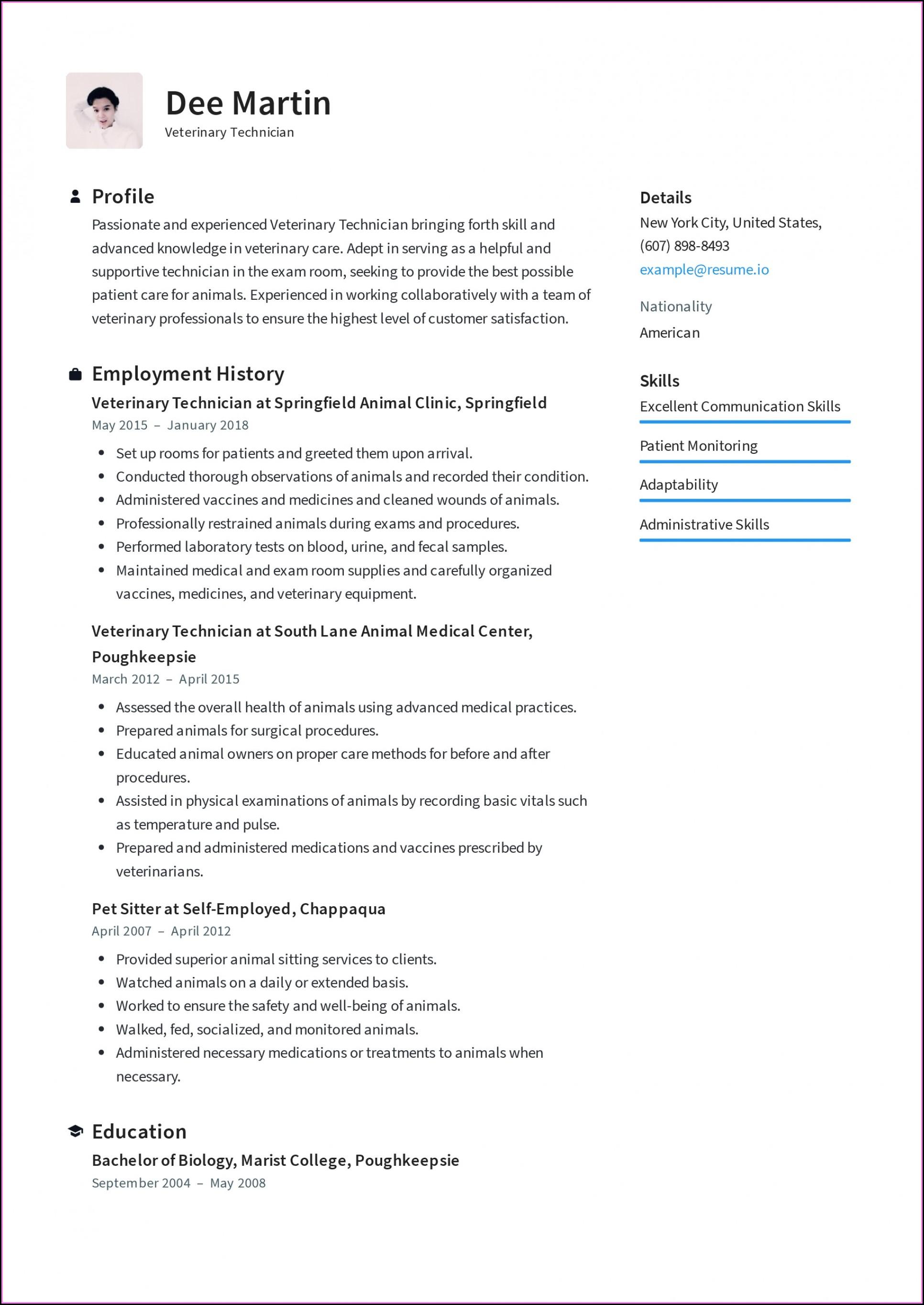 Best Resume Format 2018 Free Download