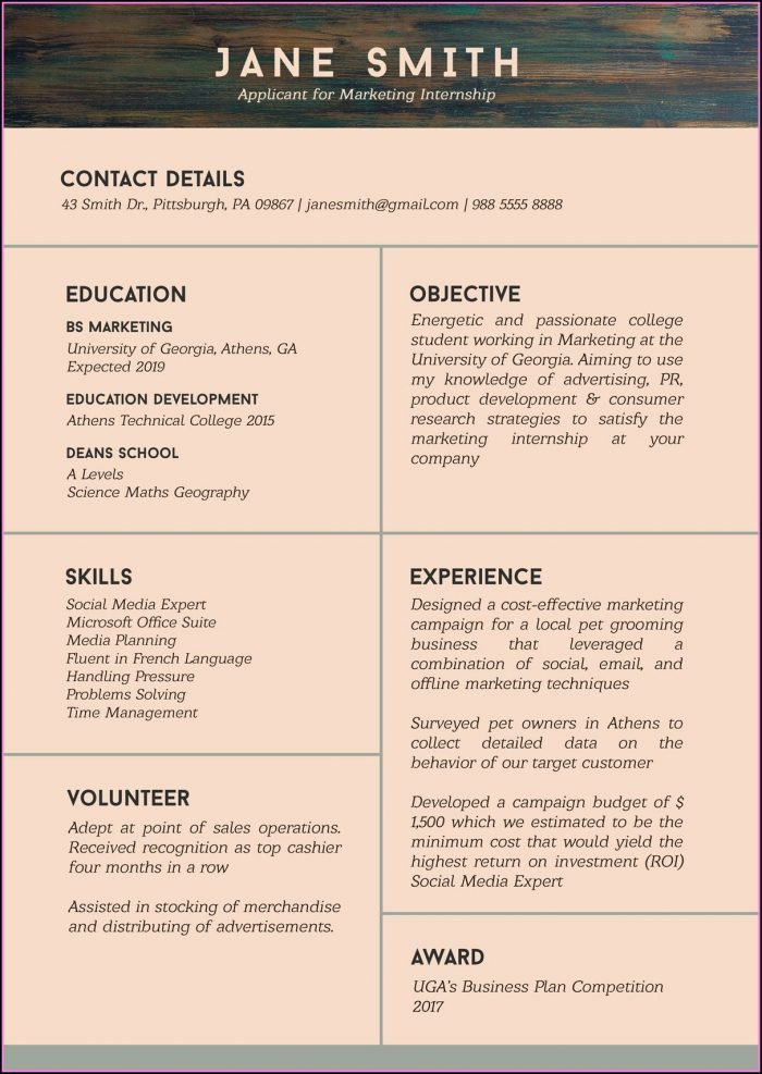 Best Resume Format 2019 Free