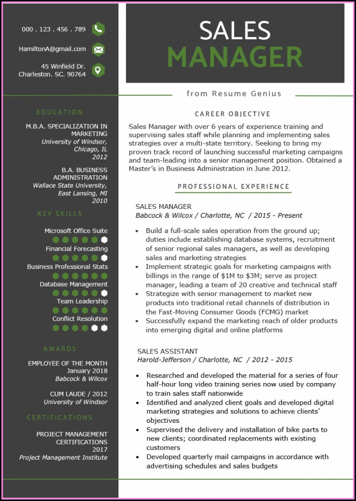 Best Resume Format For Freshers Civil Engineers Free Download Pdf