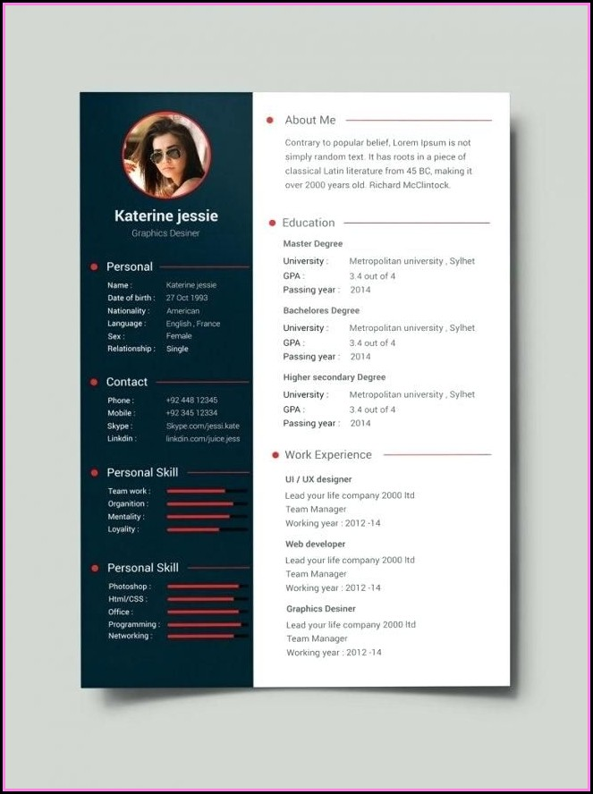 Creative Professional Cv Template