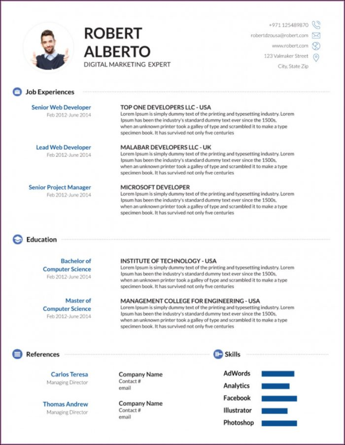 Cv Format Template Word Free Download