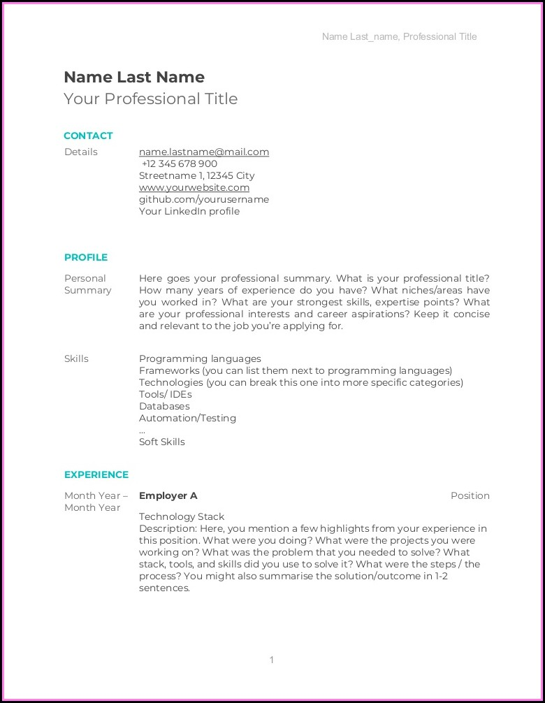 Cv Template Software Developer