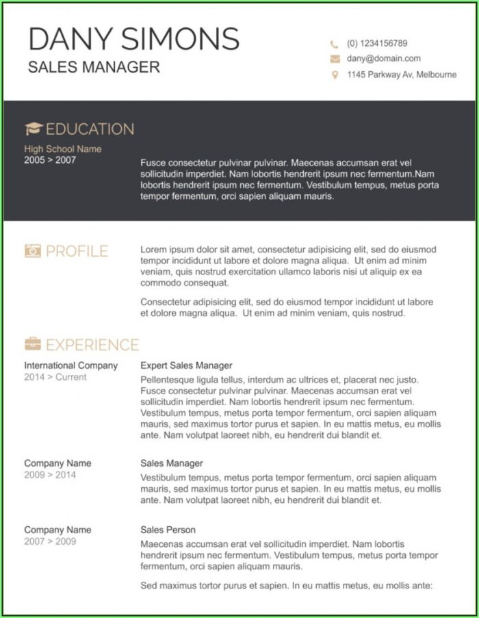 Free Download Resume Templates Microsoft Word 2007