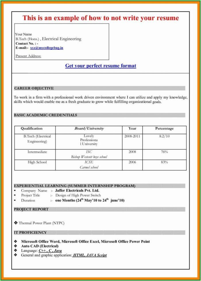 Free Resume Download Ms Word Format