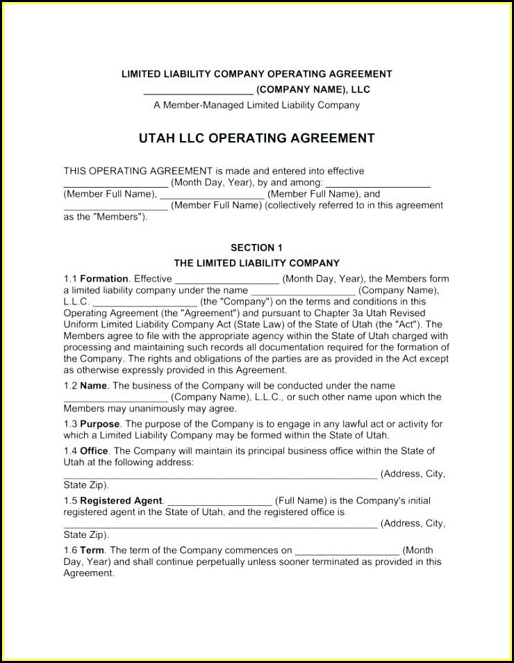 Multi Member Llc Operating Agreement Template Free