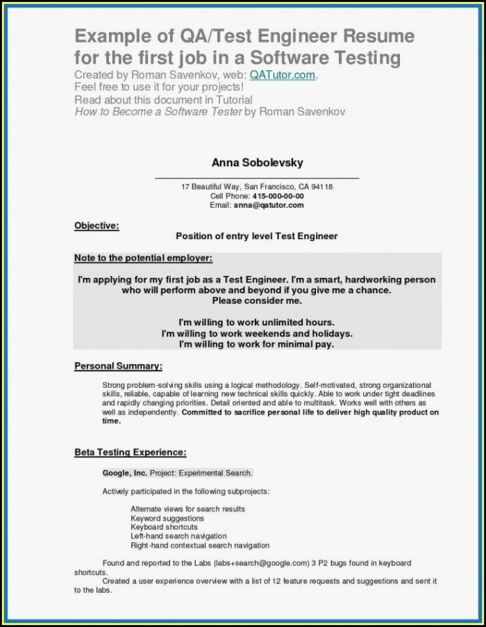 My First Job Resume Templates