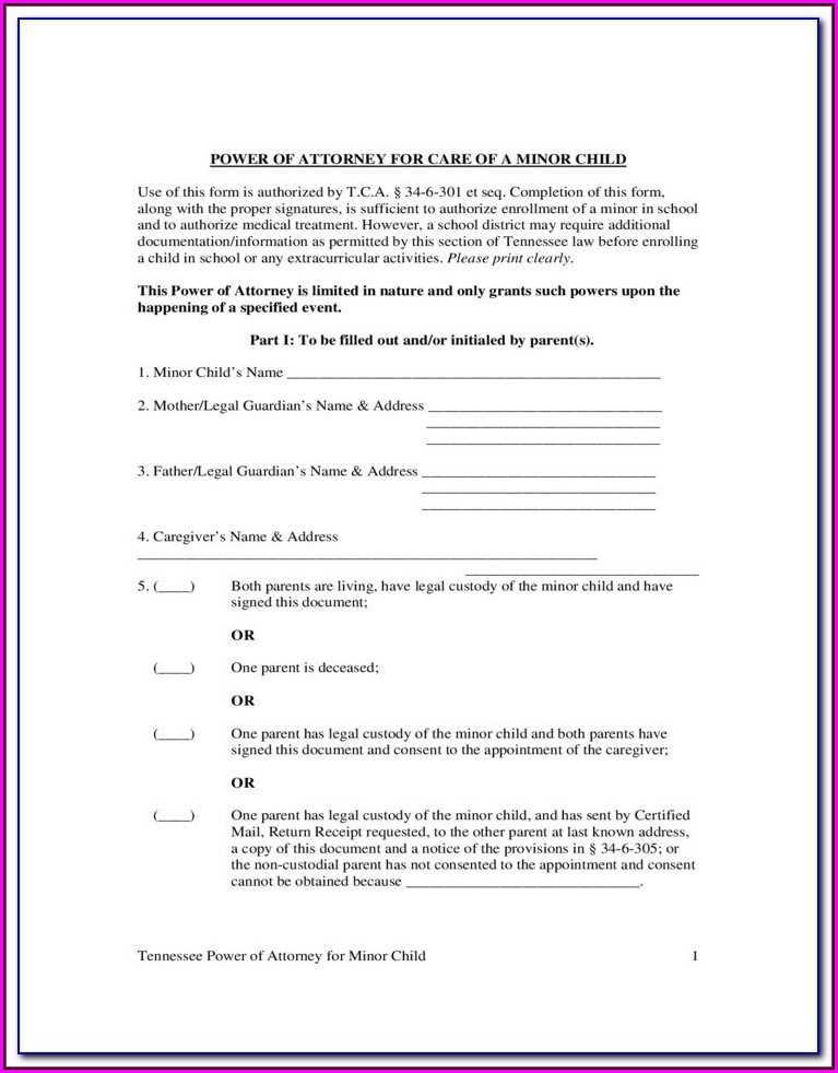 Guardianship Forms Ga