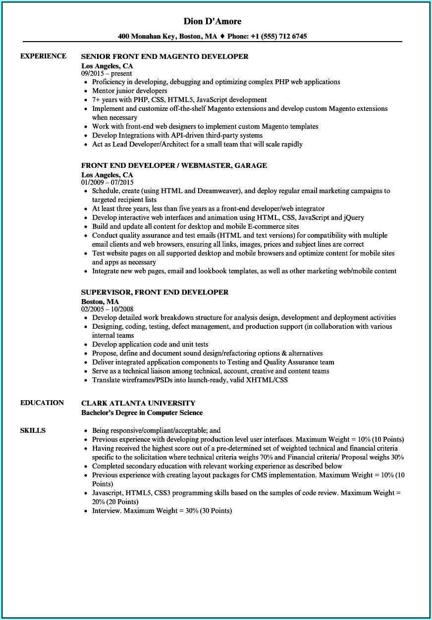 magento front end developer resume  resume  resume