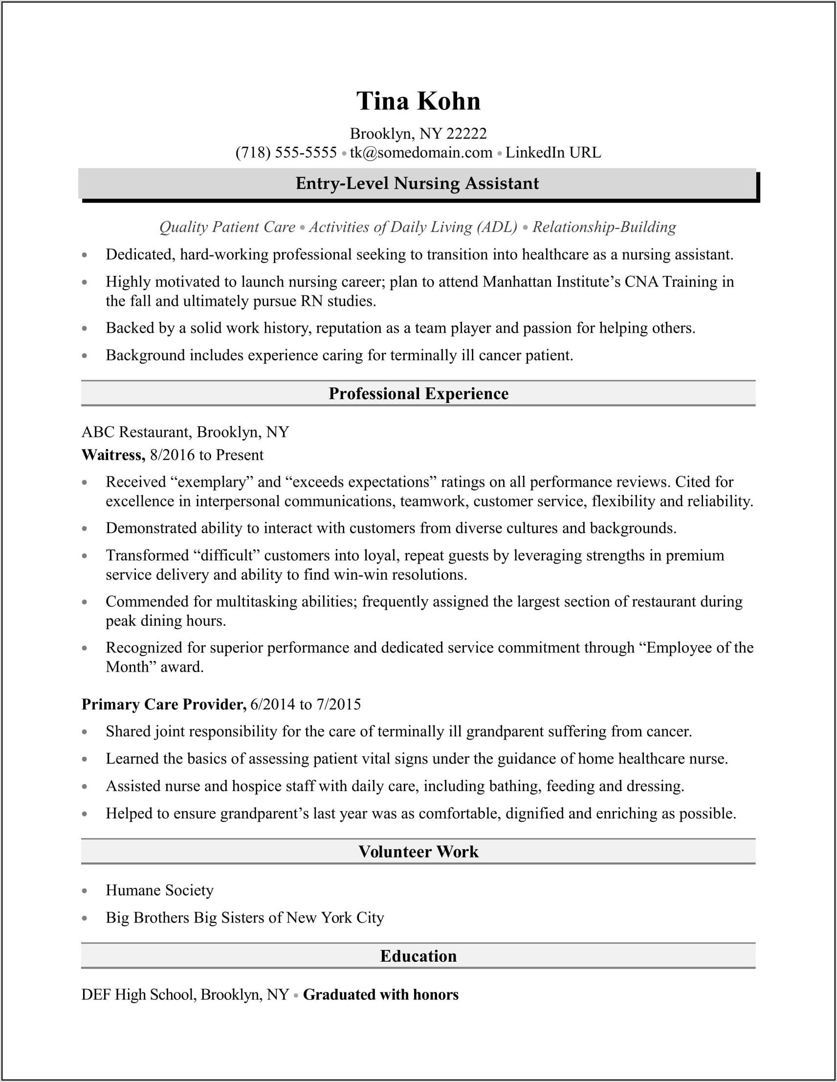 Nursing Assistant Resume Template