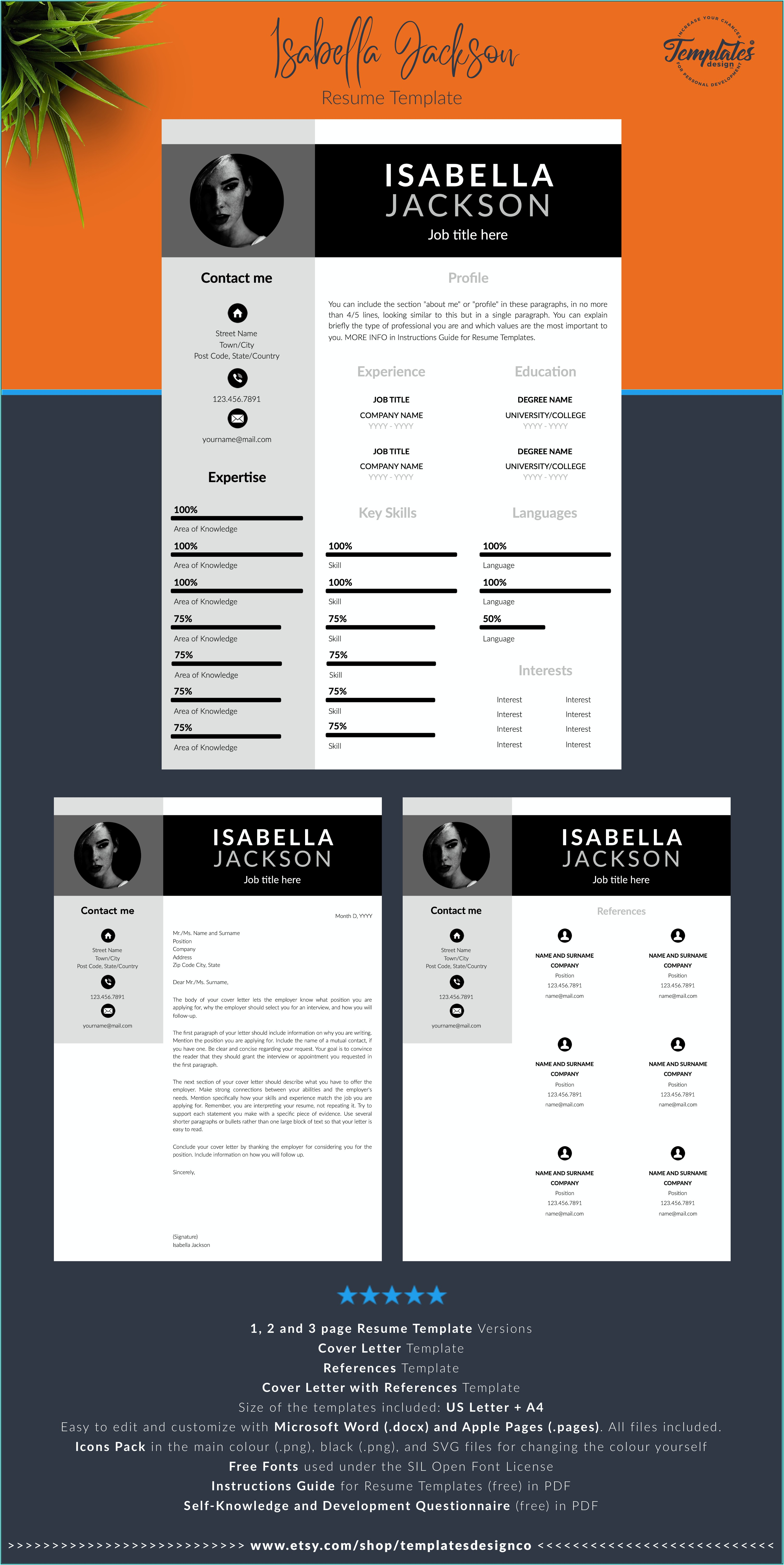 Professional Resume Template For Executives