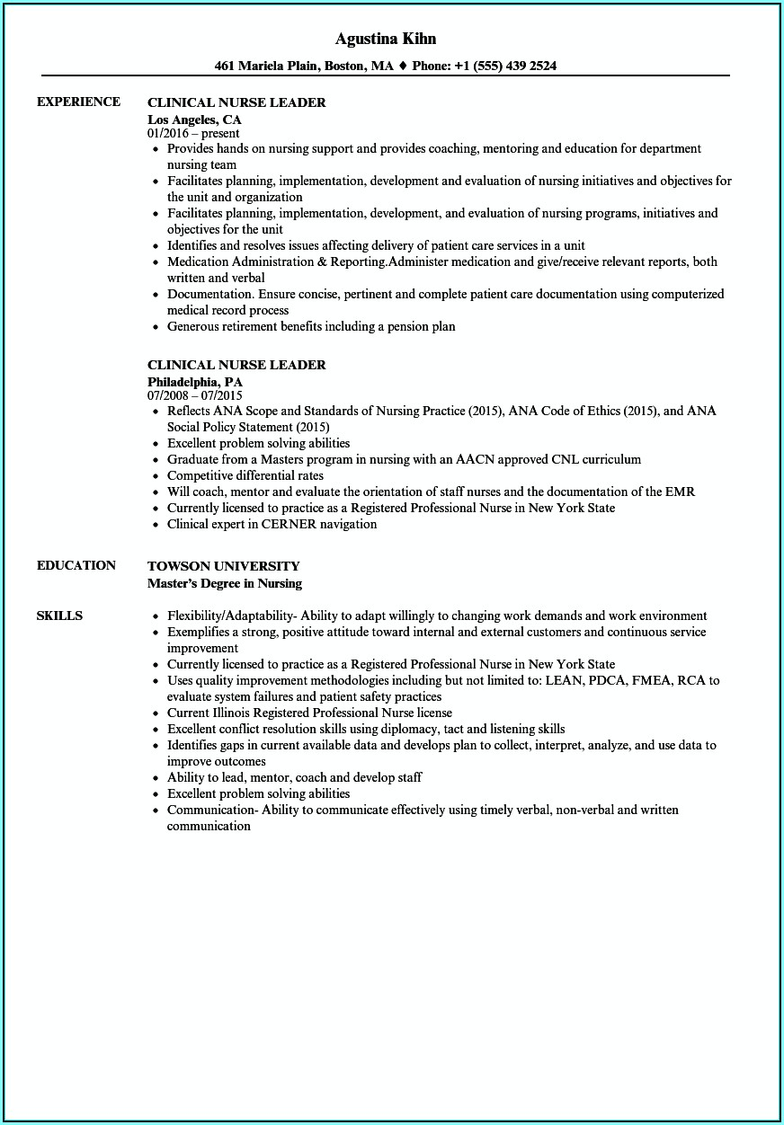 Resume Examples For Leadership