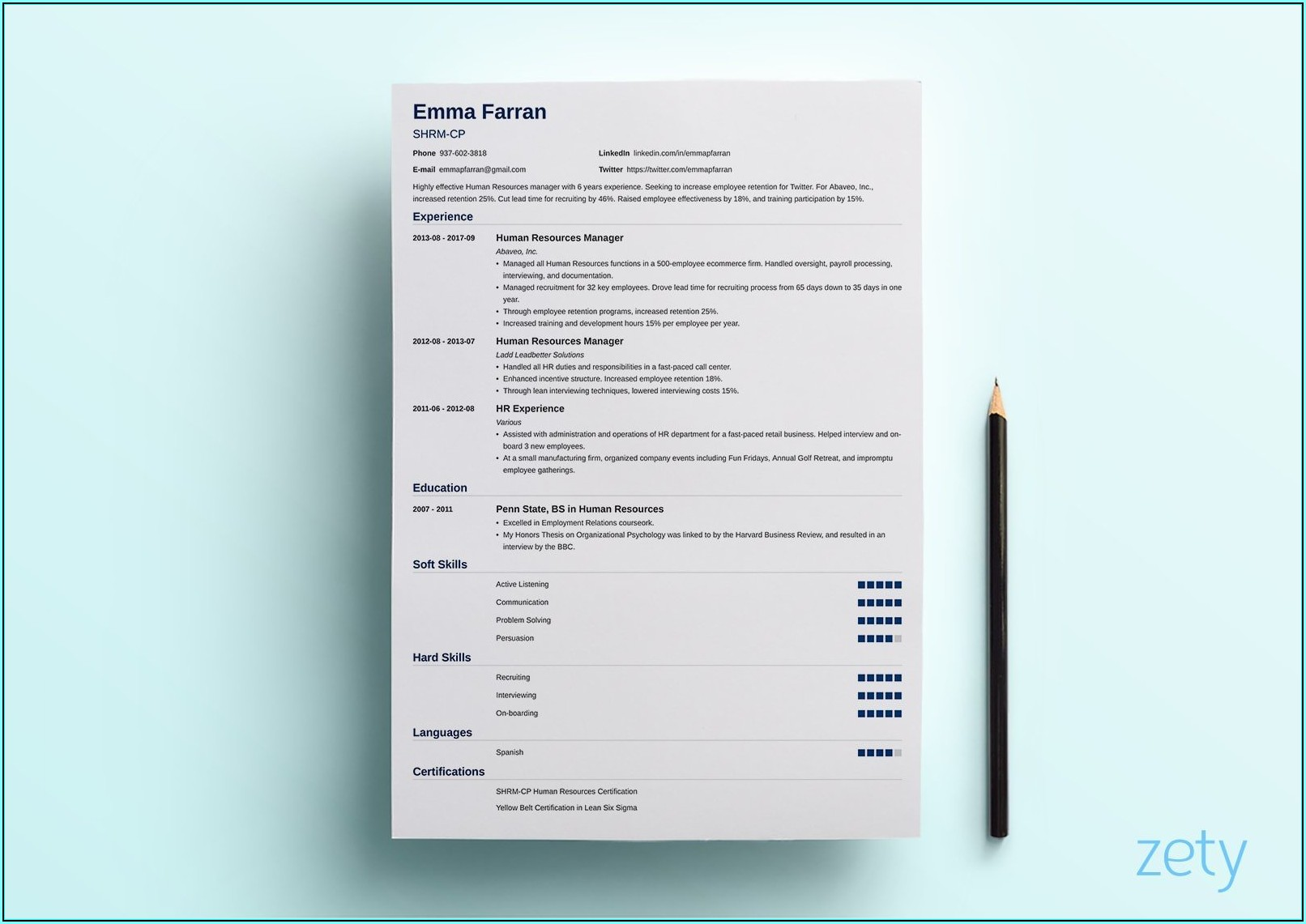 Resume Layout Examples Design