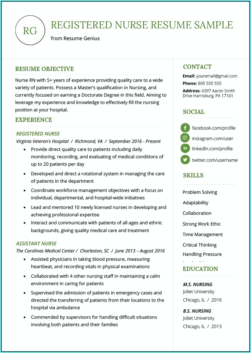 Resume Profile Examples For Registered Nurse
