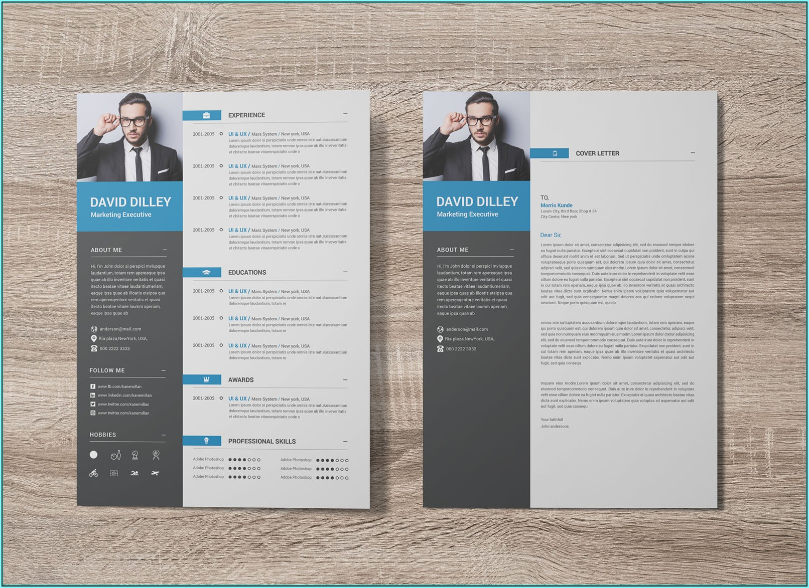 Resume Template For Executives
