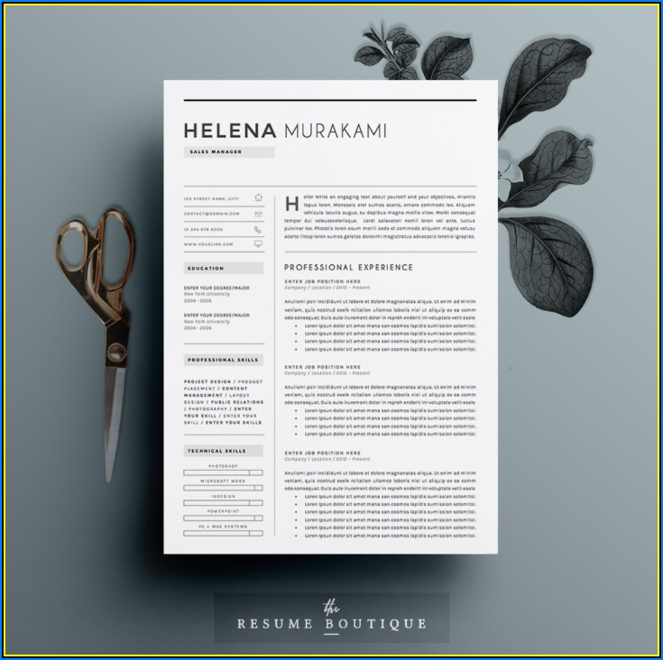 Resume Templates For Sales Manager