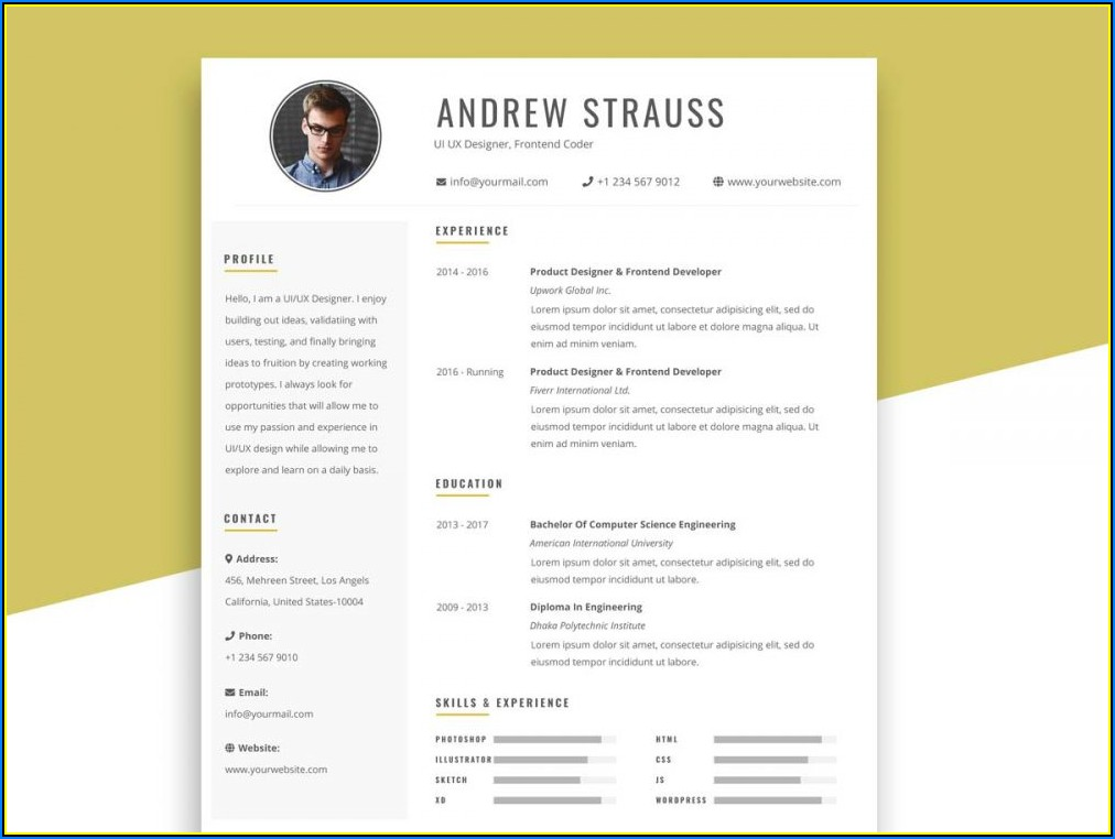 Simple Resume Template Free