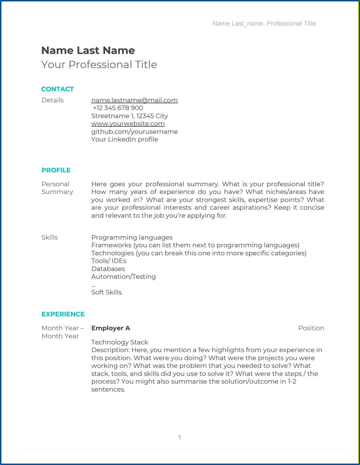 Software Cv Template