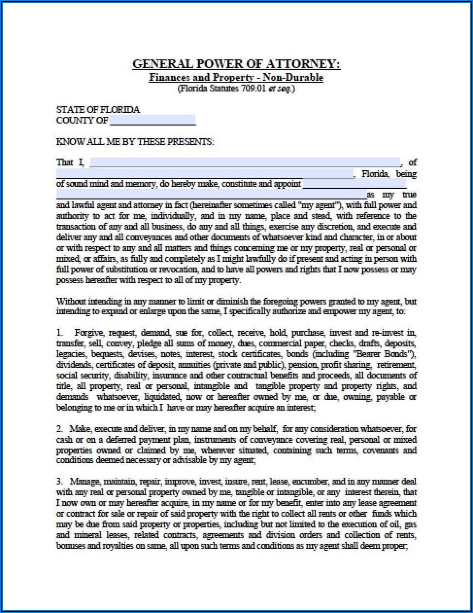 State Of Florida Durable Power Of Attorney Form Free