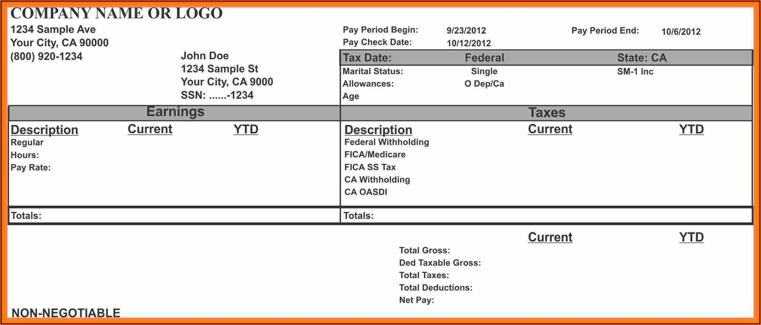 1099 Pay Stub Template
