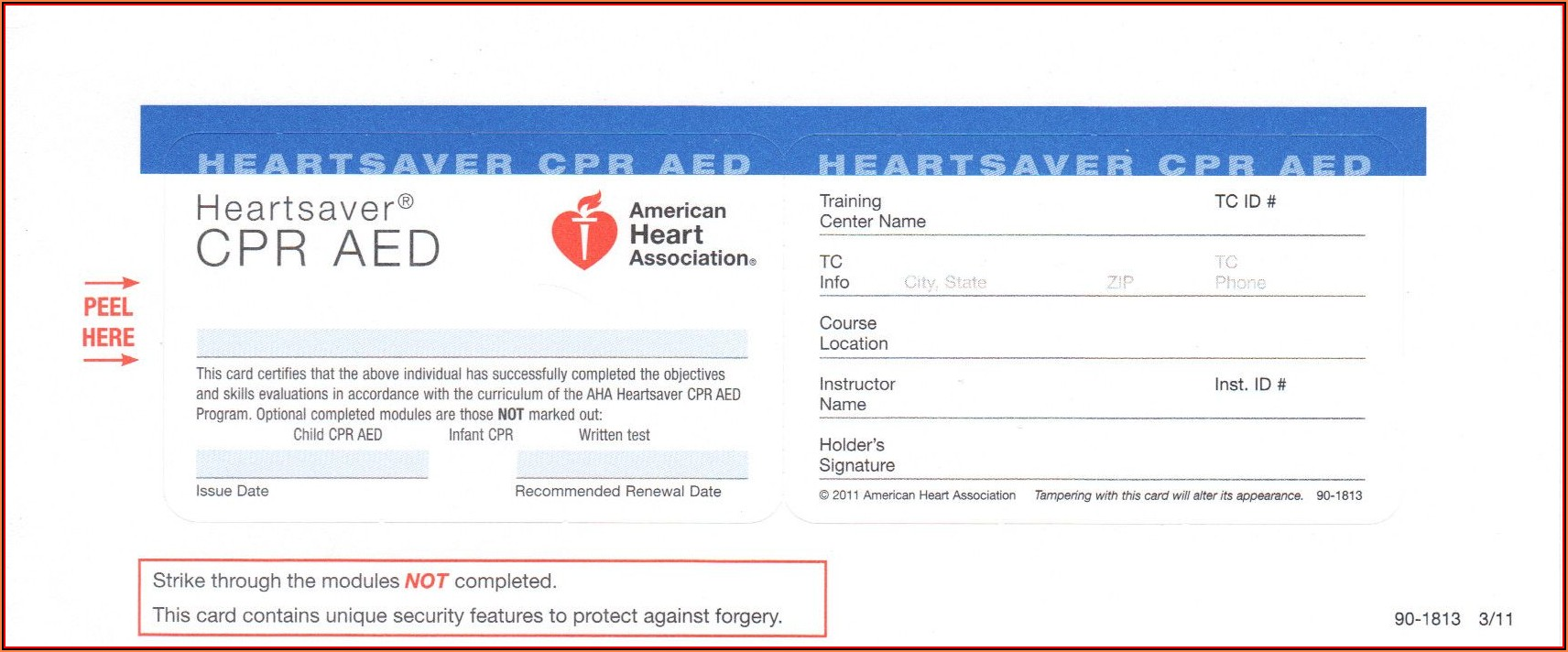 Blank Cpr Card Template