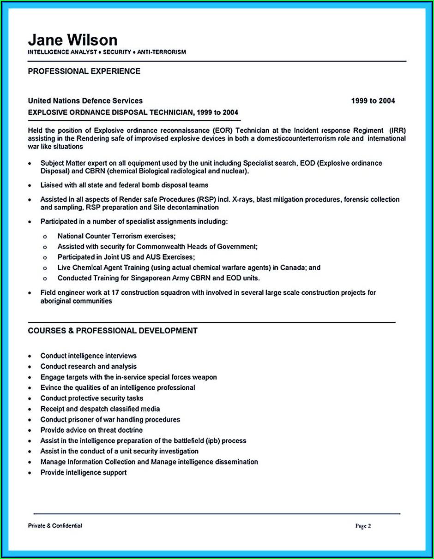Business Intelligence Analyst Sample Resume