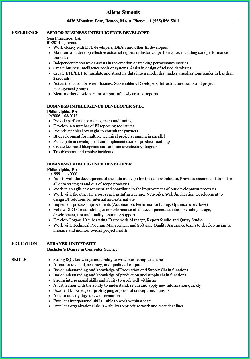 Business Intelligence Developer Sample Resume
