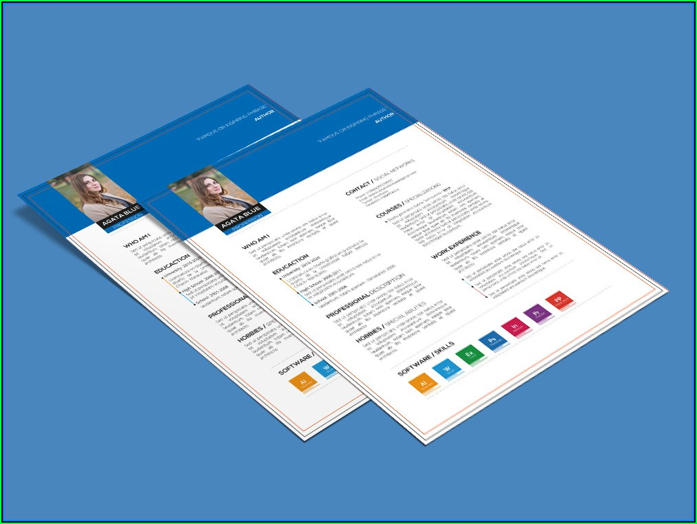 Combination Resume Template Free Download