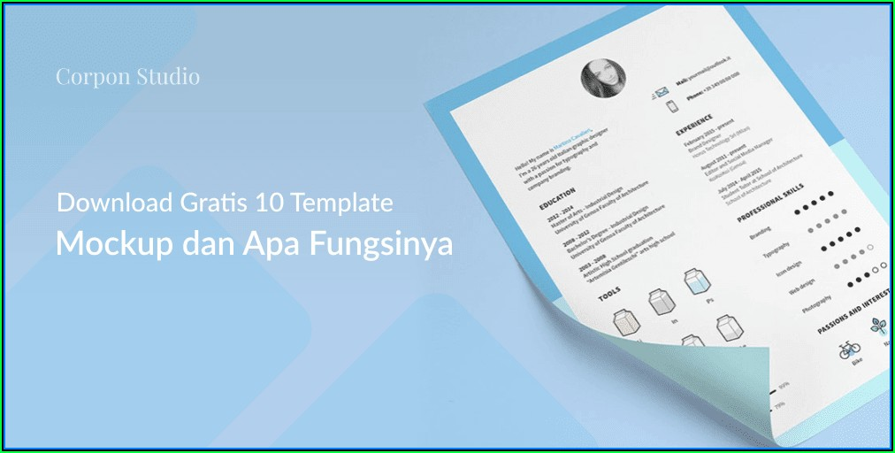 Cv Format Template Word Download