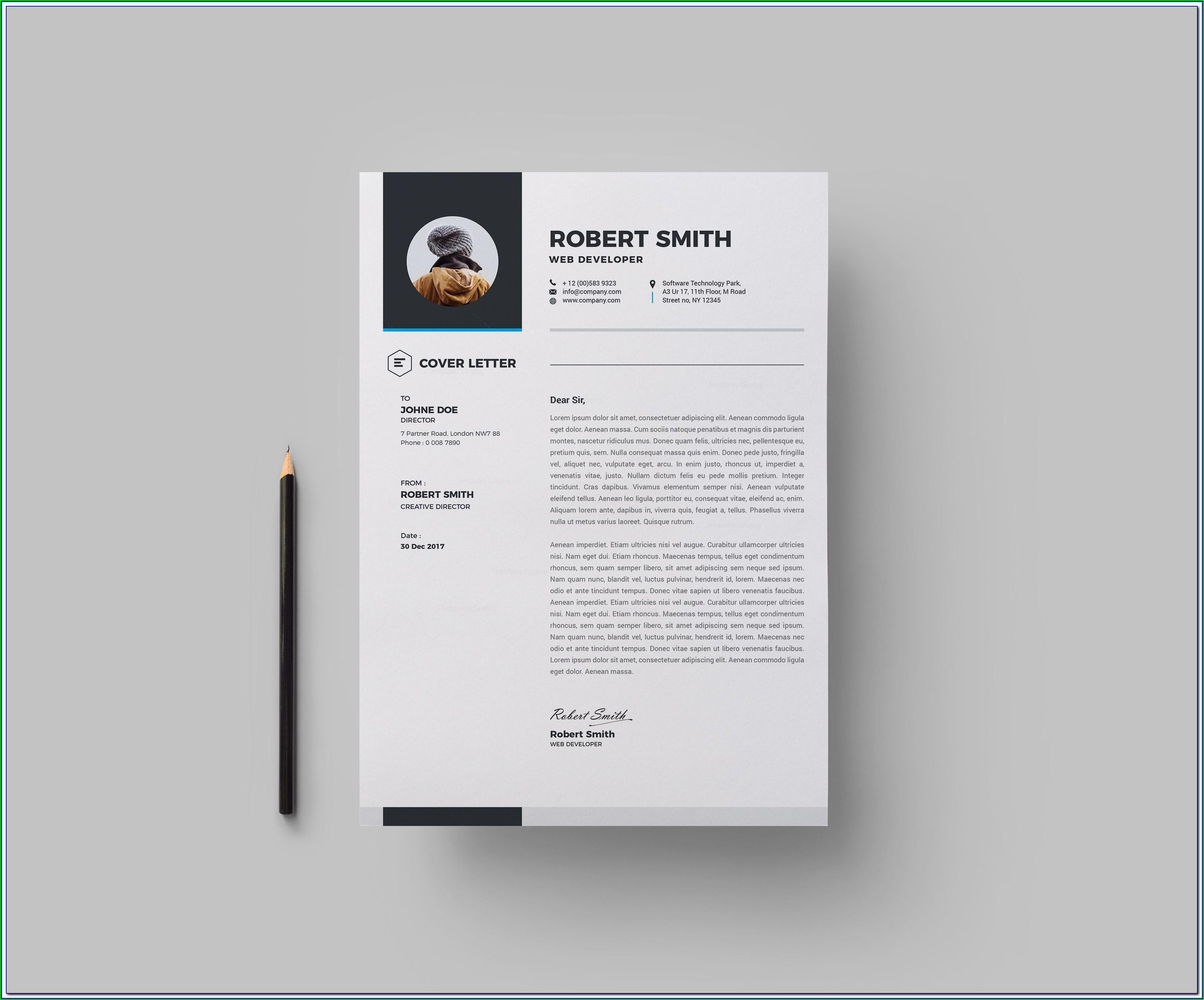 Download Premium Resume Templates
