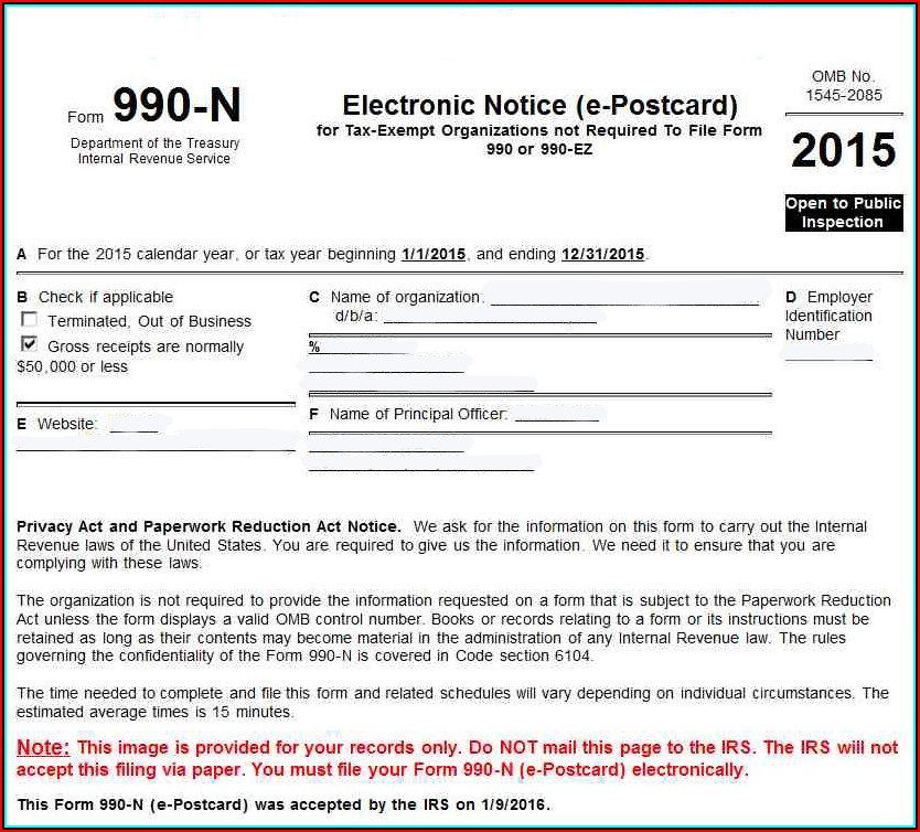 E Postcard File Your Electronic Irs Form 990 N