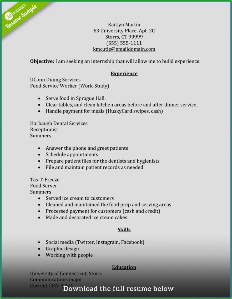 Example Of A Perfect Resume Format