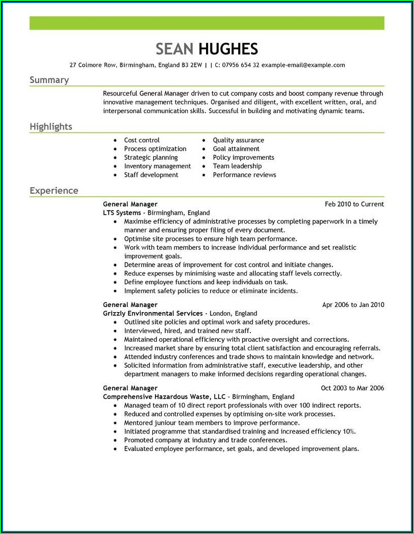 Example Professional Resumes
