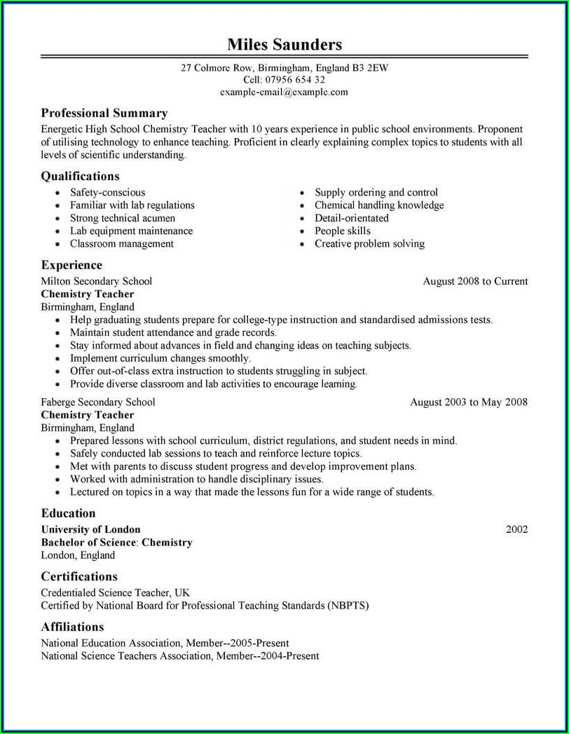 Executive Director Resume Template Word