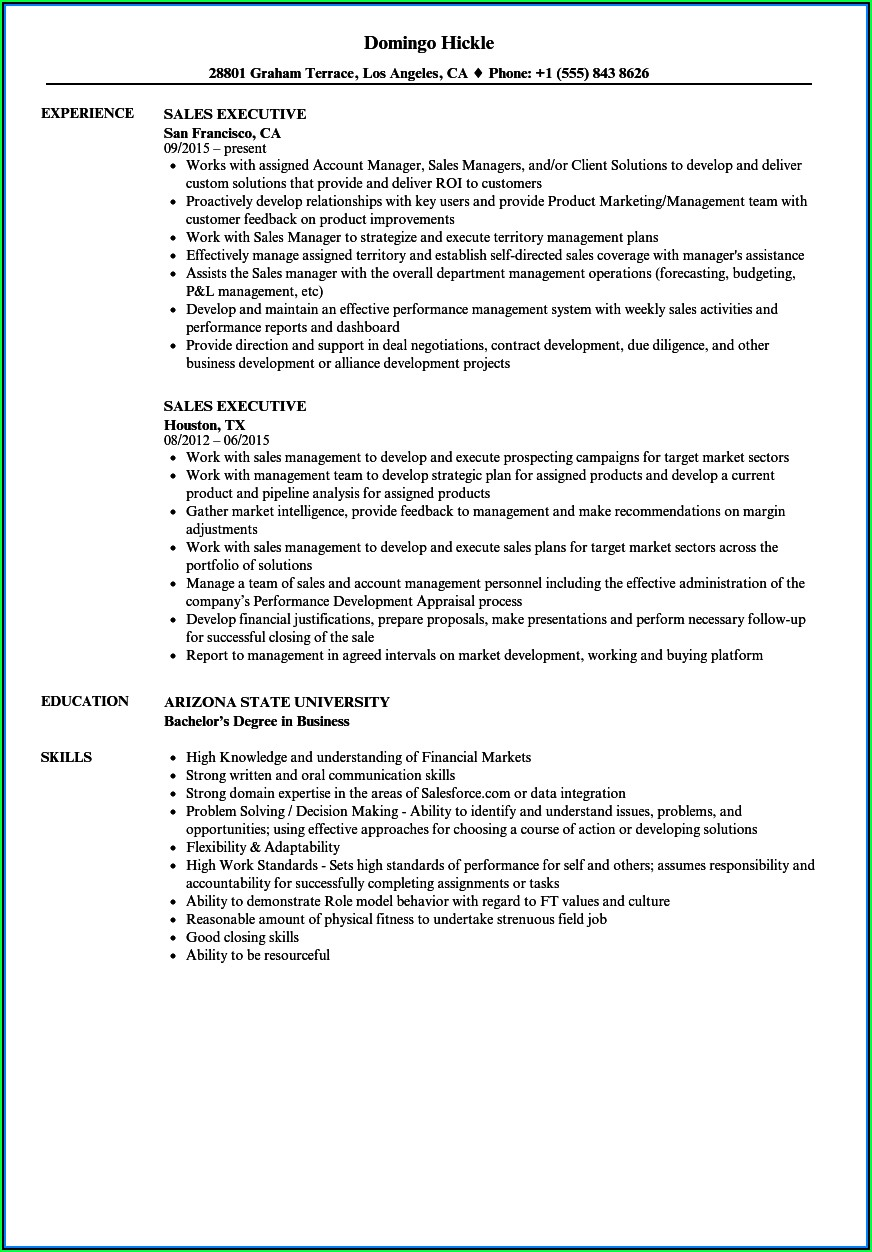 Field Sales Executive Cv Template