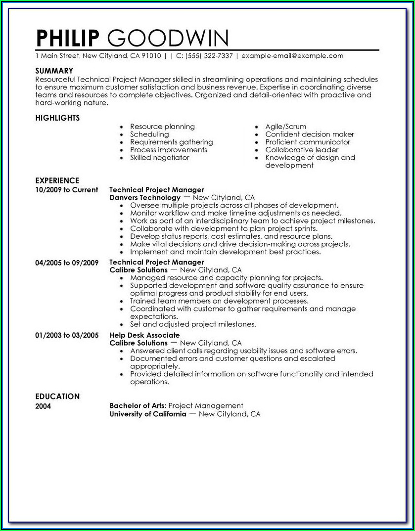 Free Business Resume Template 2018