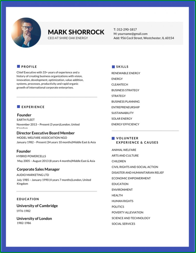 Free Example Of Resume Templates