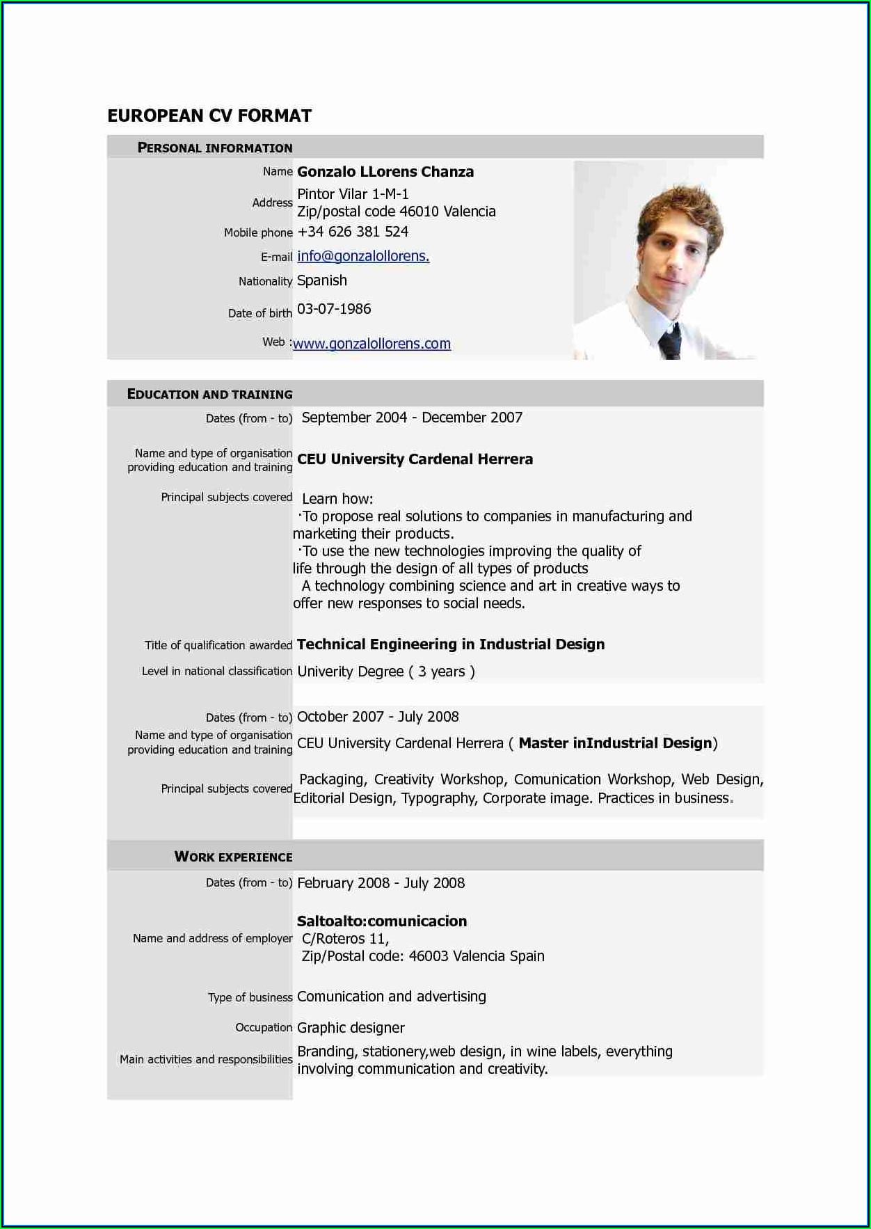 Free Executive Resume Templates 2017